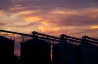 Sunset, Timaru Grain Feeders