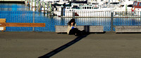 Girl Reading, Wellington Waterfront