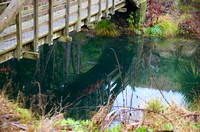 Bridge Reflection, TImaru Scenic Reserve